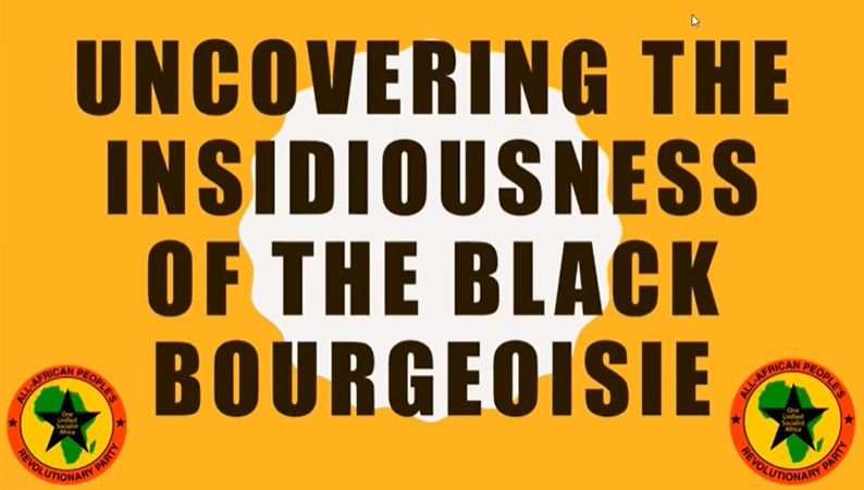VIDEO: Uncovering the Insidiousness of the Black Bourgeoisie